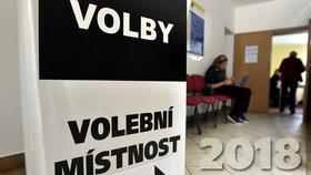 Prezidentské volby pod drobnohledem: Moravskoslezský kraj chystá přísné namátkové kontroly