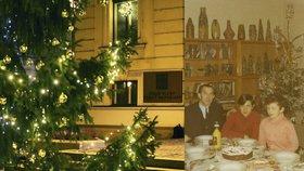 Co našli ministři pod stromečkem: Kolo, vzduchovku i slupky od brambor