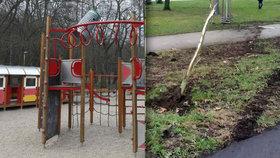 Řádění vandalů ve Stromovce nebere konce. Lesníci jsou smutní ze zmařené práce