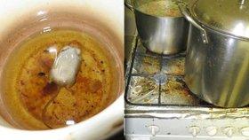 """Myš v oleji a plesnivá lednice: Inspekce objevila """"nejnechutnější"""" hospodu"""