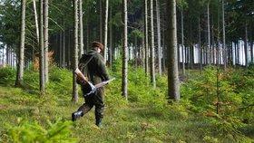 Myslivecký koncert pod stromy: V zookoutku zazní lesnice a borlice