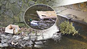 Z potoka Botič se stává skládka: Pražané ho po uklizení zanesou nepořádkem během pár hodin