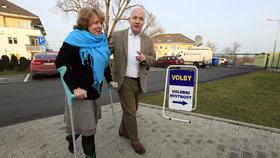 """""""Manželka odnesla kampaň berlemi,"""" říká poražený Fischer. Čeká ho europarlament?"""