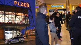 Krvavá řež dětí v nákupním centru v Plzni. Dívka bodla sokyni (14) nožem vedle oka a do ruky