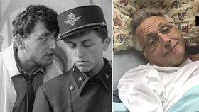 Dojemné vzkazy Menzelovi do nemocnice! Neckář a spol. gratulují režisérovi k narozeninám