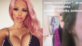 Vážně nemocná česká Barbie s poprsím č. 8: Konec růžové vaty na hlavě!
