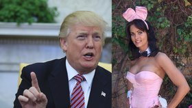 Trump si chtěl koupit mlčení playmate, bývalý právník má nahrávku