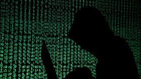 Soud s hackerem Nikulinem, kterého vydalo Česko do USA, byl odročen