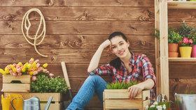 Zahradní domek: pro udržení pořádku i jako ochrana