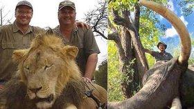 Ruský lovec naštval svět: V Zimbabwe zastřelil slona, kterého zkoumali vědci