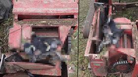 Krvavá lázeň při zahradničení: Štípač dřeva rozdrtil seniorovi nohu!