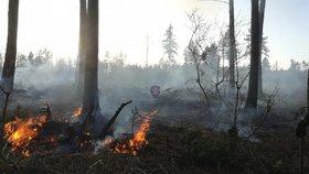 Na Novojičínsku hořel les: Situaci zhoršil vítr