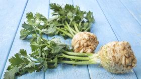 Bulvový a řapíkatý celer: Jak ho správně vysadit a pěstovat?