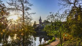 """Ukažte rozmanitost pražské přírody celému světu: Soutěžte v režimu """"čím víc, tím líp"""""""