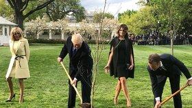 Žádná tragédie, pošleme nový, zhodnotil Macron uhynulý dub v Bílém domě
