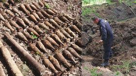 VIDEO: Obří nález válečné munice! 700 kg střeliva se válelo v lese na Brněnsku
