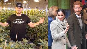 Poprask před svatbou Harryho a Meghan: Synovec nevěsty se živí prodejem marihuany!