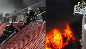 FOTOGALERIE: Požár v Hostivaři prověřil nejen hasiče. Zásah zvládli na výbornou