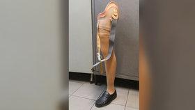 Pomóc! Na dětském hřišti leží lidská noha! Strážníci si odvezli protézu i s polobotkou