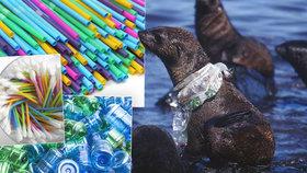 """Brusel chce zakázat plastová brčka, talíře i """"uchošťoury"""". Zamořují oceány"""