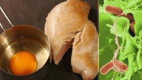 Nejrizikovější potraviny ve vedrech? Lékařka: Kuřecí maso a domácí vejce