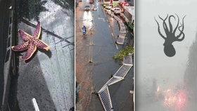 Padaly kroupy, pršely chobotnice i hvězdice. Silná bouře bičovala Čínu