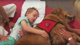 Přišel o  rodinu a sám málem nepřežil. Neuvěřitelně mu pomohl pes!
