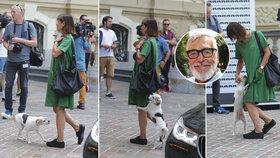 Zaskočená manželka Bartošky ve Varech: Pes ji vítal víc než muž!
