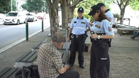 Policisté si posvítili na auta, zahrádkářské kolonie či ubytovny. Našli i hledané osoby