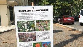 Na Letenském náměstí a u Vltavy vznikají nové záhony. Uplatnění najdou po celý rok