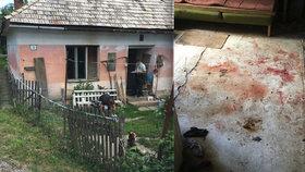 Krvavá jatka na Slovensku: Opilec si vylil vztek na nevinném psovi