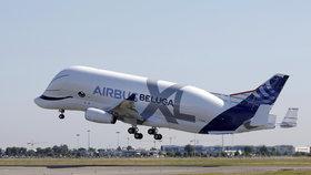 Létající velryba nakynula. Obří letoun Beluga XL pojme dvě křídla jiného airbusu