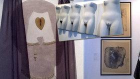 Komunisty zakázaní, Vajdou znovuobjevení: Na Kampě vystavují díla slovenských umělců