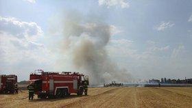 Sucho sužuje Prahu: Magistrát zakázal pálení ohňů v lesích i parcích