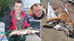 Veterinář o tygrovi (†5) z jatek u Berouska: Zvíře bylo zdravé, dožilo by se 20 let!