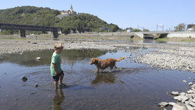 Z Labe je brouzdaliště! Sucho devastuje české řeky. Ústím protéká 3x méně vody