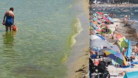 50 polských pláží zavřeli kvůli nebezpečným sinicím. Němci před koupáním u Baltu varují