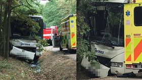 Autobus u Prahy narazil do stromu: Řidič nejspíš zkolaboval za volantem!