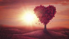 Arianin milostný horoskop na únor: Štíři v žáru vášně, Lvy čekají komplikace