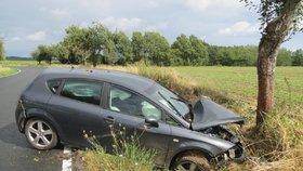 Auto na Lounsku najelo do stromu, chlapec (11) bojuje o život