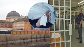 Kuriozity za českými mřížemi: Hladovkáři, 15 sebevražd, senioři v lochu i 10násobní vězni