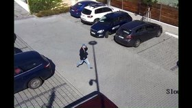 Postrach Bílovic nad Svitavou polévá auta žíravinou: Neušetřil ani to starostovo