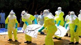 Masoví zabijáci z Afriky: Vědci chtějí vyhubit komáry a zatočit s malárií, ebola řádí dál