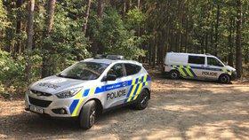 Hrůzný nález v Březové u Prahy: V lese ležel mrtvý muž, nejspíš se zasebevraždil