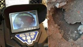 Hasiči na Přerovsku zachraňovali pejska z kanálu: Museli vykopat jámu a trubku rozebrat
