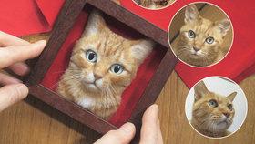 Tomu neuvěříte! Obrazy z filcu vypadají jako živé kočky