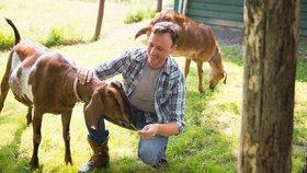 Kozy jsou citlivější, než se myslelo. Přitahují je úsměvy lidí