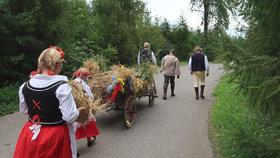 Třetí žně v pražském Pralese jsou minulostí. Teď jsou na řadě dožínky