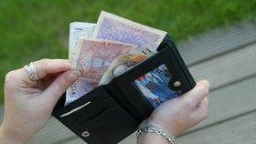 Pětina českých rodin se považuje za chudé. Z výplaty sotva vyžijí