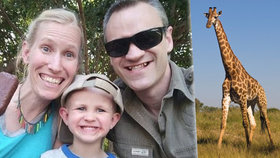 Šli se projít, zaútočila na ně žirafa. Chlapec (3) a matka bojují o život